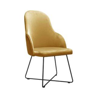 Fotele Fotel tapicerowany Clavinelo